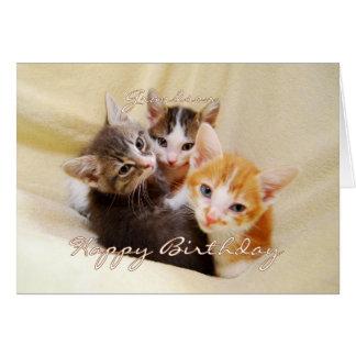 Trio do feliz aniversario do neto dos gatinhos cartão