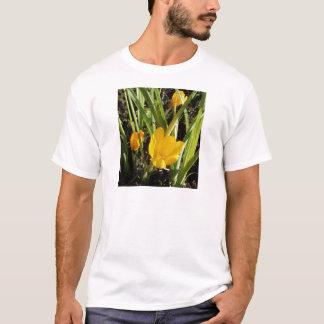 Tshirt Açafrões