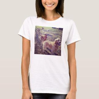 Tshirt Cães do golden retriever do vintage alinhados