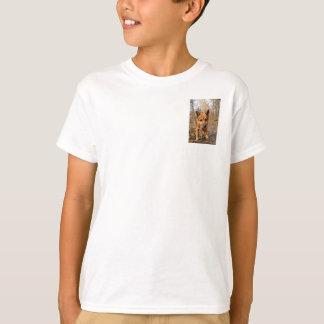 Tshirt Cão