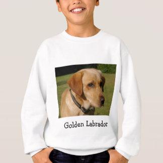 Tshirt Labrador dourado