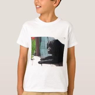 Tshirt Labrador retriever preto customizável