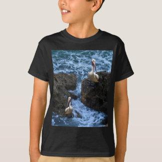 Tshirt Pelicanos em rochas do mar,