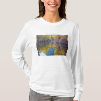 Tshirt WA, floresta nacional de Wenatchee, angra de
