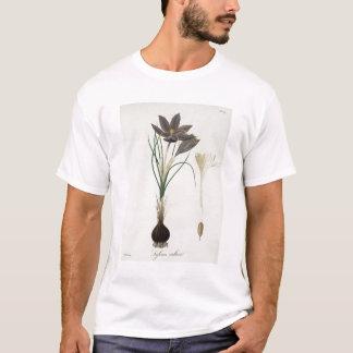 """Tshirts Açafrão de açafrão de """"Phytographie Medicale"""" por"""