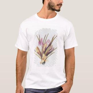 Tshirts Açafrão ou açafrão, 'de La Guirlande de Julie'