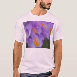 Tshirts Flores delicadas finas do açafrão