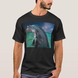 Tshirts Golfinho nos Bahamas