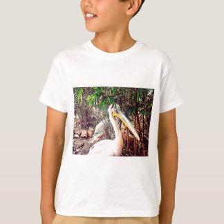 Tshirts pelicanos