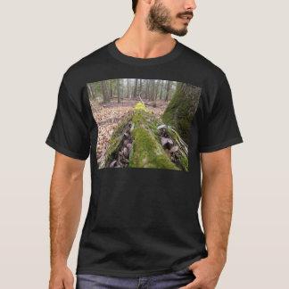 Tshirts Registro caído