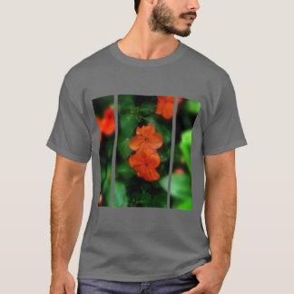 Tshirts Serenidade