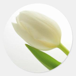 Tulipa branca adesivo