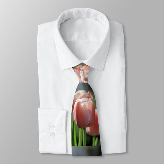 Tulipas cor-de-rosa gravata