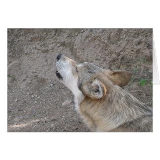 Uivo mexicano do lobo cartão comemorativo