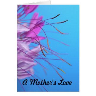 Um amor de mãe cartão