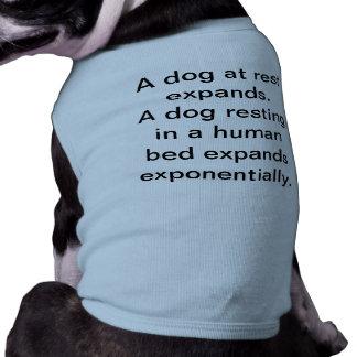 Um cão em repouso camisa sem mangas para cachorro