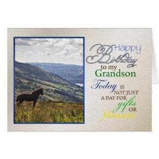 Um cartão de aniversário do cavalo para o neto