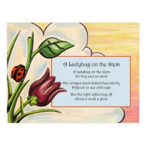 Um joaninha na haste cartao postal
