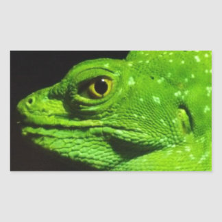 Um lagarto do Basilisk Adesivo Retangular