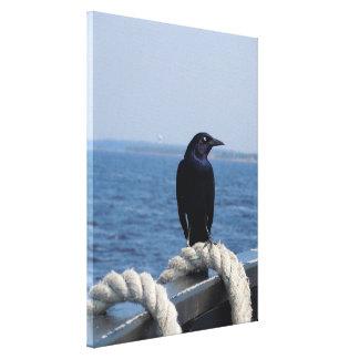 Um pássaro preto na balsa impressão de canvas envolvidas