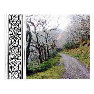 Uma caminhada em Wicklow Cartão Postal