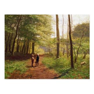 Uma caminhada na floresta cartão postal