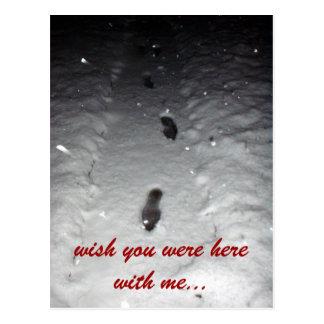 Uma caminhada na neve cartão postal
