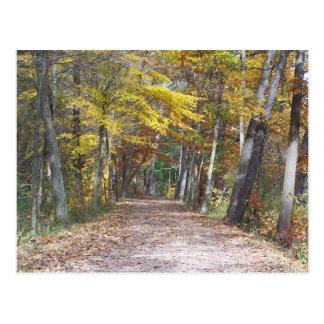 uma caminhada quieta