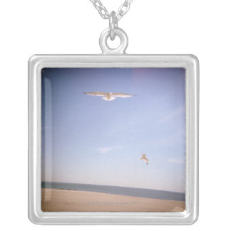 uma imagem sonhadora das gaivotas que voam na colar banhado a prata