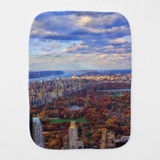 Uma vista de cima de: Outono no Central Park 01 Paninho Para Bebês