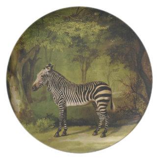 Uma zebra, 1763 (óleo em canvas) prato
