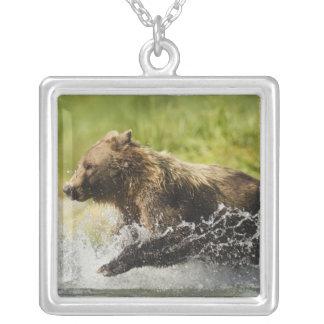 Urso de Brown, fêmea, pescando para salmões Colar Banhado A Prata