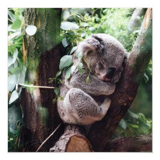 Urso de Koala bonito que relaxa em uma árvore Convite Quadrado 13.35 X 13.35cm