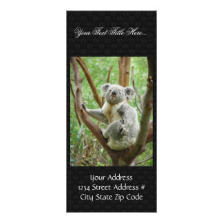 Urso de Koala que senta-se na árvore no jardim zoo Panfleto Informativo