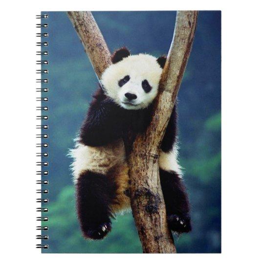Urso de panda bonito caderno espiral