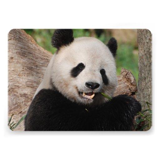 Urso de panda convites personalizado