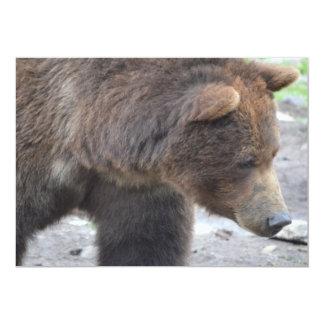 Urso de urso convite 12.7 x 17.78cm
