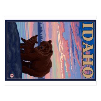 Urso e Cub - Idaho Cartão Postal