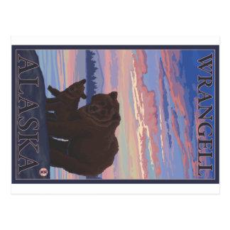 Urso e Cub - Wrangell, Alaska Cartão Postal