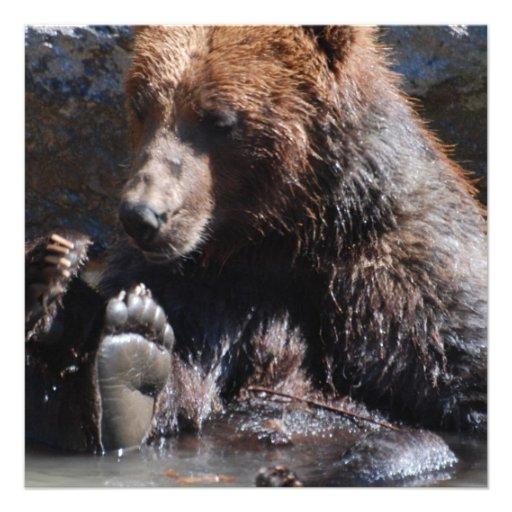 Urso embebendo convites personalizados