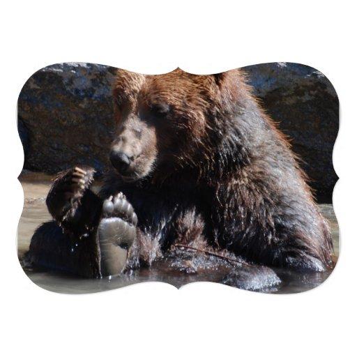 Urso embebendo convite