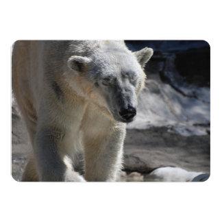 Urso polar branco bonito convite 12.7 x 17.78cm