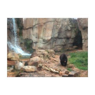 Urso preto americano impressão de canvas esticada