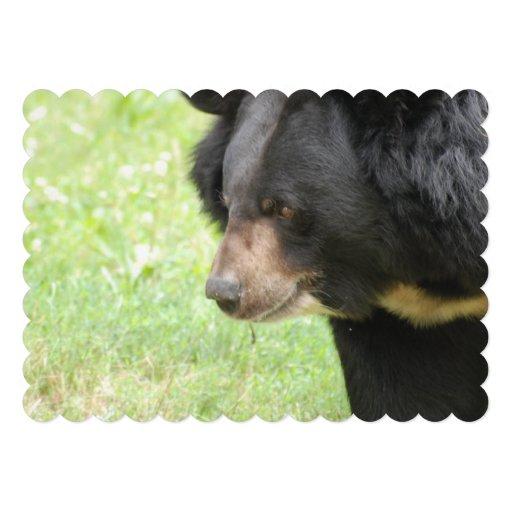 Urso preto convite
