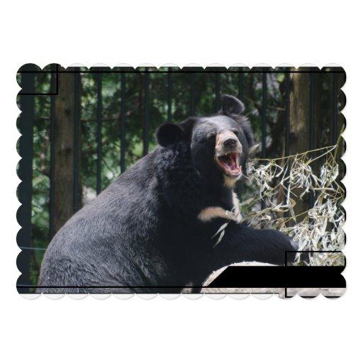 Urso preto convites personalizados