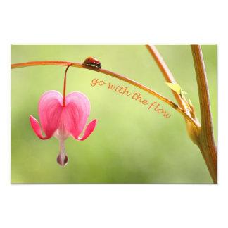 Vá com o joaninha e a flor do fluxo artes de fotos