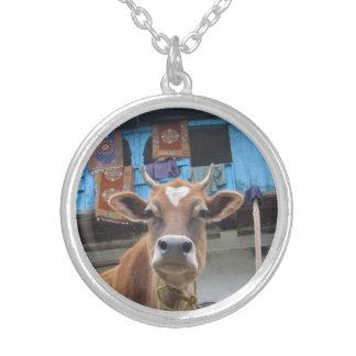 Vaca bonita colar banhado a prata