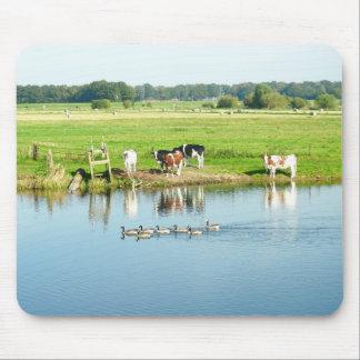 Vacas na paisagem holandesa Mousepad do rio