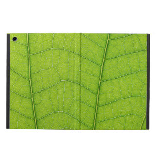Vai a caixa verde do ar do iPad