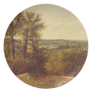 Vale de Dedham, c.1802 (óleo em canvas) Prato De Festa